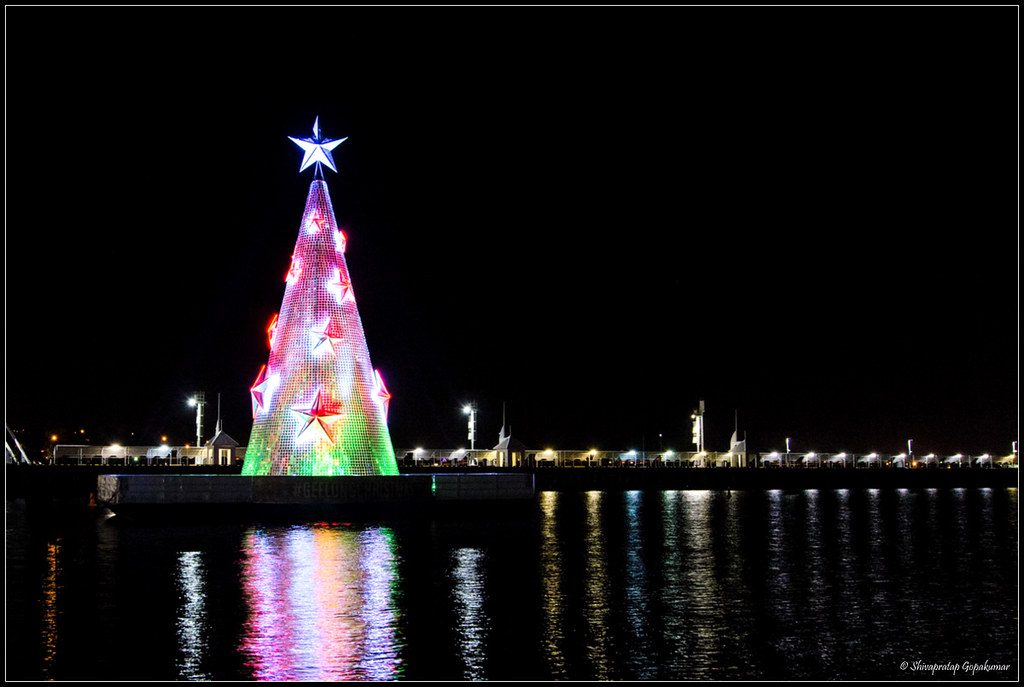 geelong floating christmas tree by shivan