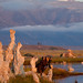 Shooting Mono Lake at Dawn
