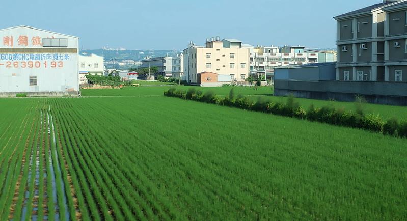 農地與工廠、房舍夾雜是台灣常見的現象 攝影:陳文姿
