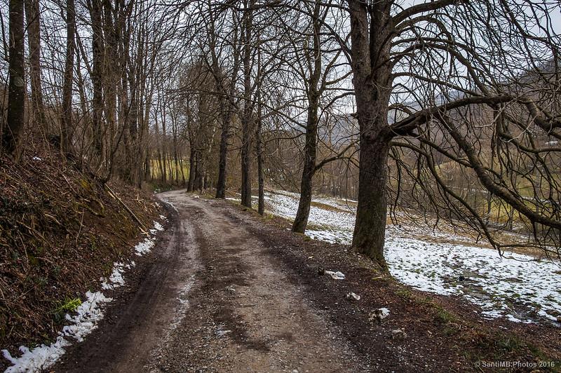 Camino de la Font del Boix a la Font de Sant Patllari