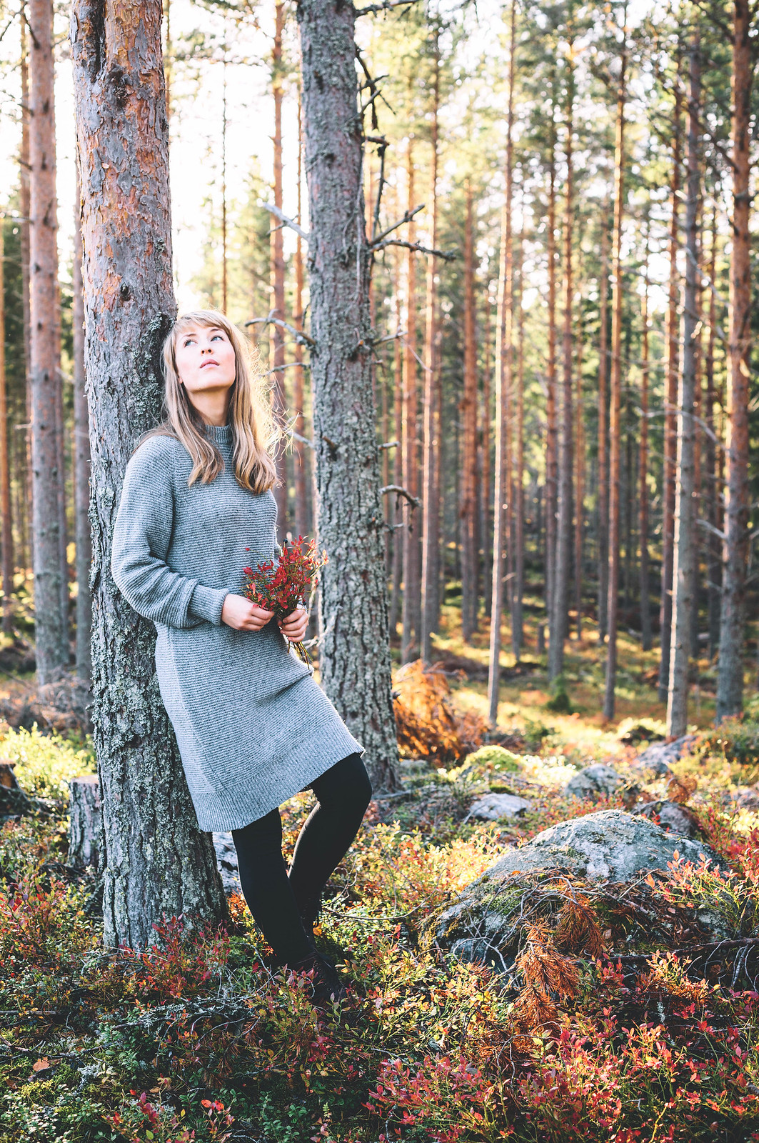 Evelinas Ekologiska