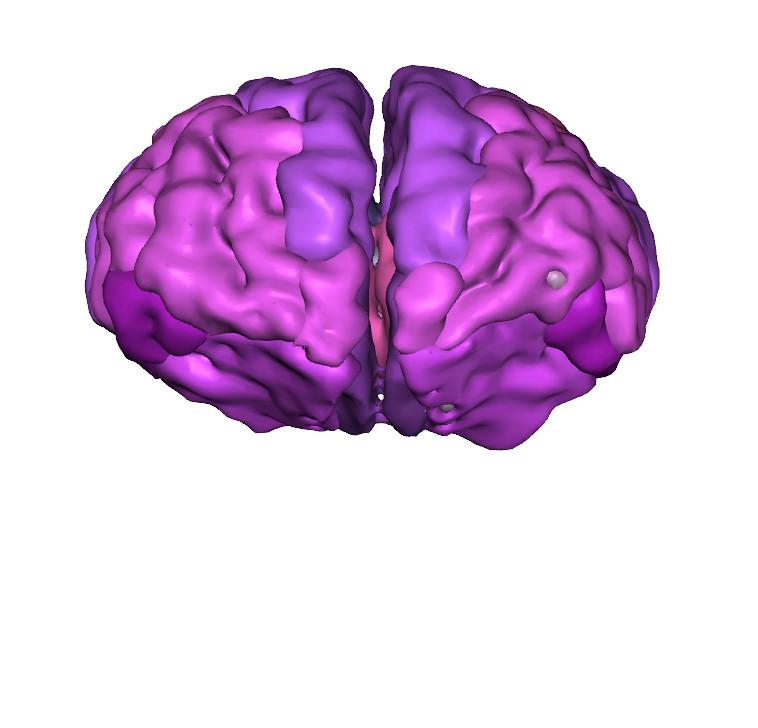 3d-pdf-brain-frontal-lobe-colored-front-view | 3D PDF brain … | Flickr