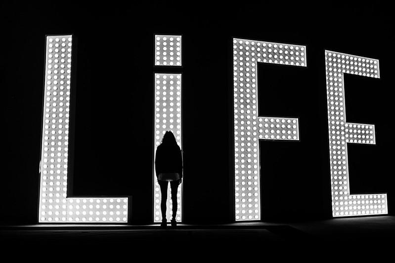 Life Observation