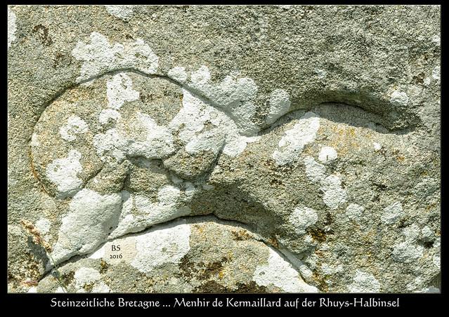 """Bretagne 2016. Nach dem Cairn du Petit Mont hier ein weiteres Relikt aus fernen Zeiten: Der Menhir von Kermaillard, ein steinzeitliches Kunstwerk. Der Weg zu diesem Hinkelstein ist mehr als schlecht ausgeschildert, wir fahren mehrmals daran vorbei, hin und wieder zurück, bis wir ihn schließlich (völlig ohne Hinweisschild) zufällig am Straßenrand hinter einer Hecke versteckt finden. Menhir ist ein bretonisches Wort und setzt sich zusammen aus men = Stein und hir = lang. Gerade die südliche Bretagne ist voll von diesen """"langen Steinen"""" und eine wahre Fundgrube für Megalithomanen. Der Menhir von Kermaillard liegt auf der Rhuys-Halbinsel im Département Morbihan und ist etwas mehr als 5 Meter hoch. Das Besondere an ihm sind die Gravuren in Form von Schlangenlinien, sowie eine Art Mondsichel sowie kleine runde Vertiefungen. - Fotos und Fotocollagen: Brigitte Stolle 2016"""
