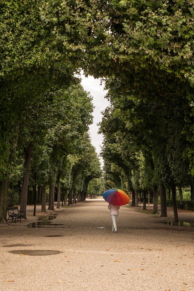 El paraguas que alegra los días de lluvia