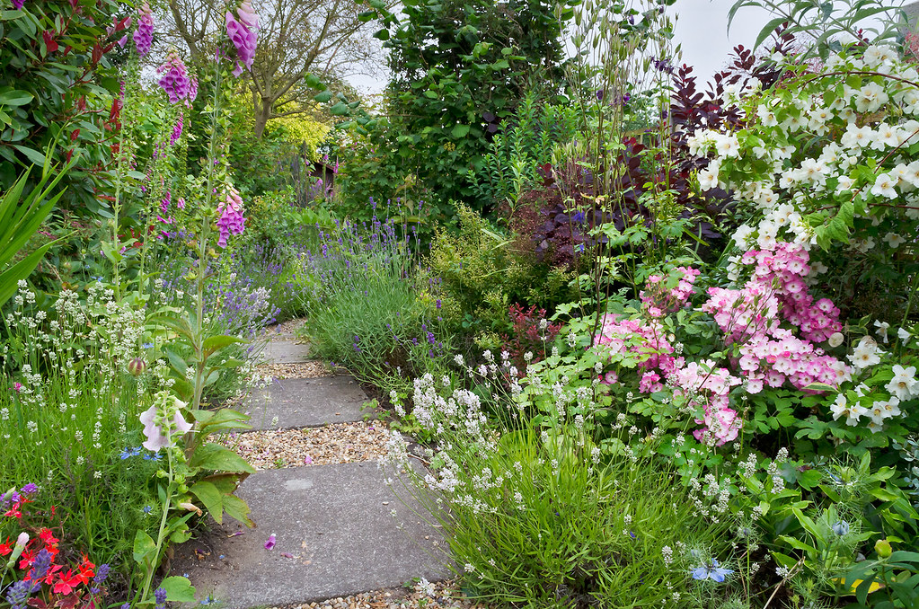 Cottage Garden Flower Border In Suffolk UK