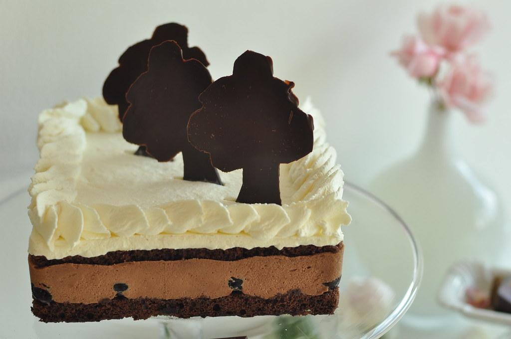 ... Modern Black Forest Cake   Schwarzwald Kuchen Modern   Torta Selva Nera    Gateaux Moderne Forêt