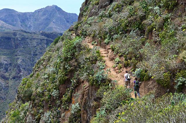 Hiking in Anaga, Tenerife