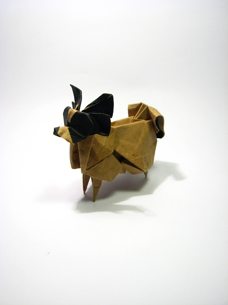 Origami Papillon Origami Papillon Designed By Hideo Komats Flickr