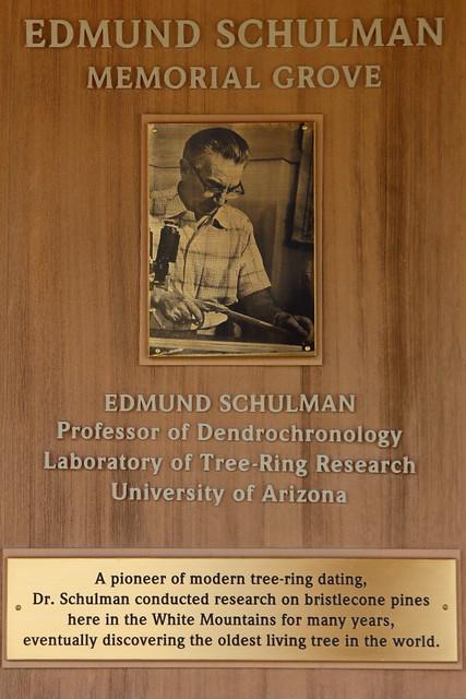 IMG_4361 Edmund Schulman