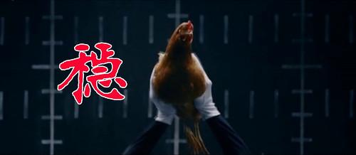 鸡头摄像稳定器