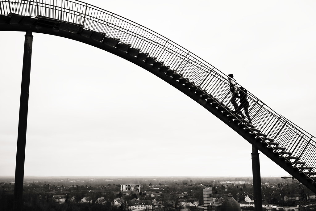 stairway to heaven tiger and turtle in duisburg karl reif flickr
