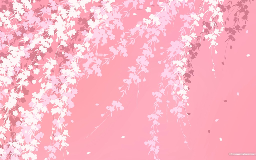 Pink Pattern Wallpaper Hd 1080p Desktop | Pink Pattern Wallp ...
