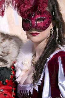 My Cat en 25600 ISO (FZ1000) 16409207167_c5b5cbff29_n