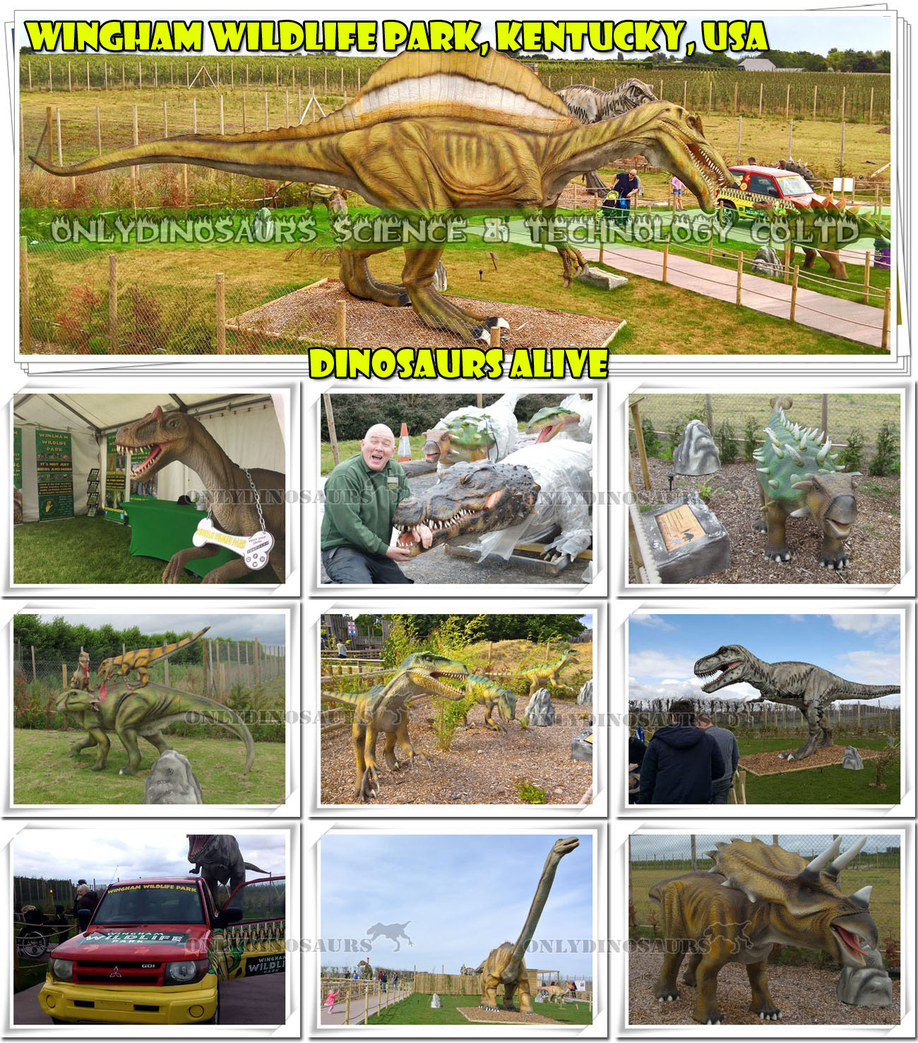 Dinosaurs Alive in Wildlife Park