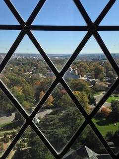 View from the National Cathedral | by greena11
