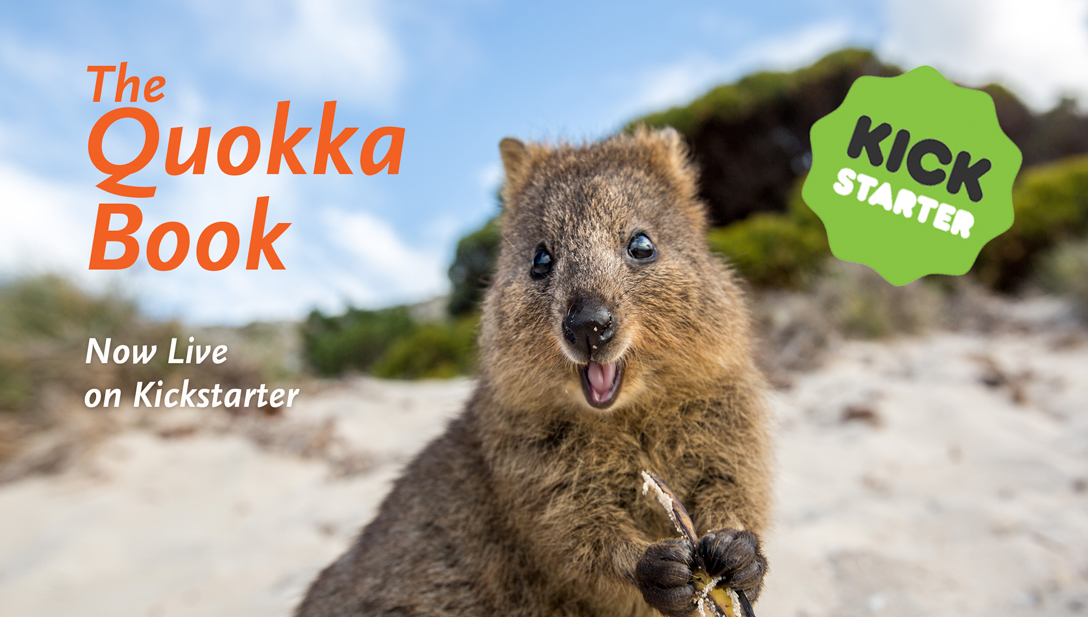 Quokka Kickstarter Book is now live