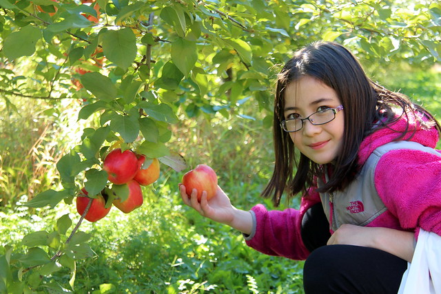Dova Apple Picking