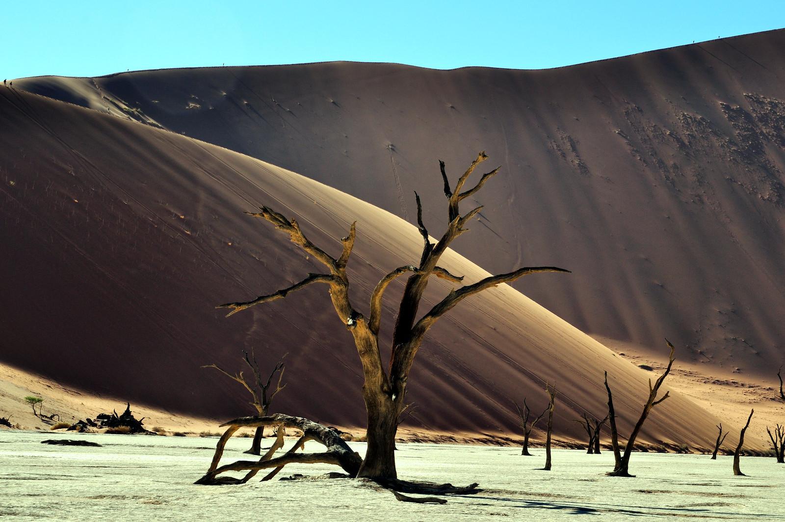 Namibia (357)