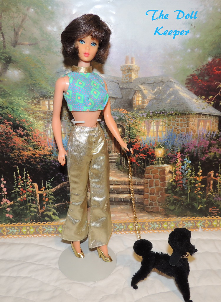 Vintage Mod Tnt Brunette Hair Fair Barbie The Doll Keeper Flickr