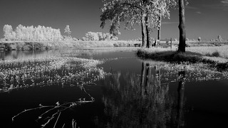 1 Bed lake side processed bw EPM1 | by Matt Jones (Krasang)