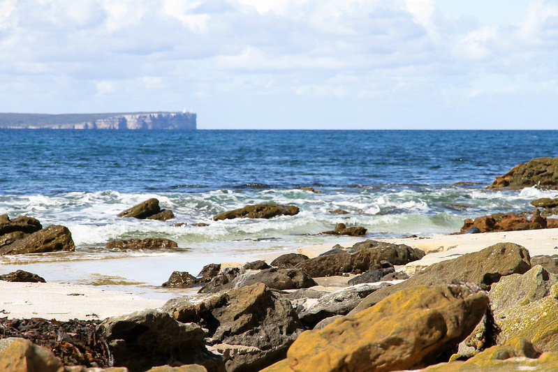 27828610714 25297f74fb c 10 NSW Beaches Worth the Roadtrip