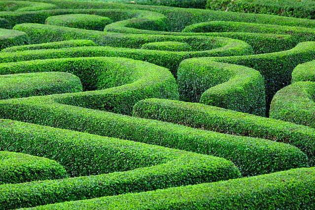 Green maze Hedge funds top papers
