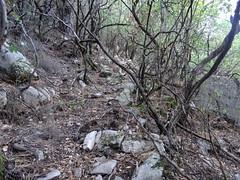 Sur l'ancien sentier au départ du plateau de Ranedda