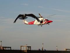 RNLI and Coastguard display at Deal Regatta