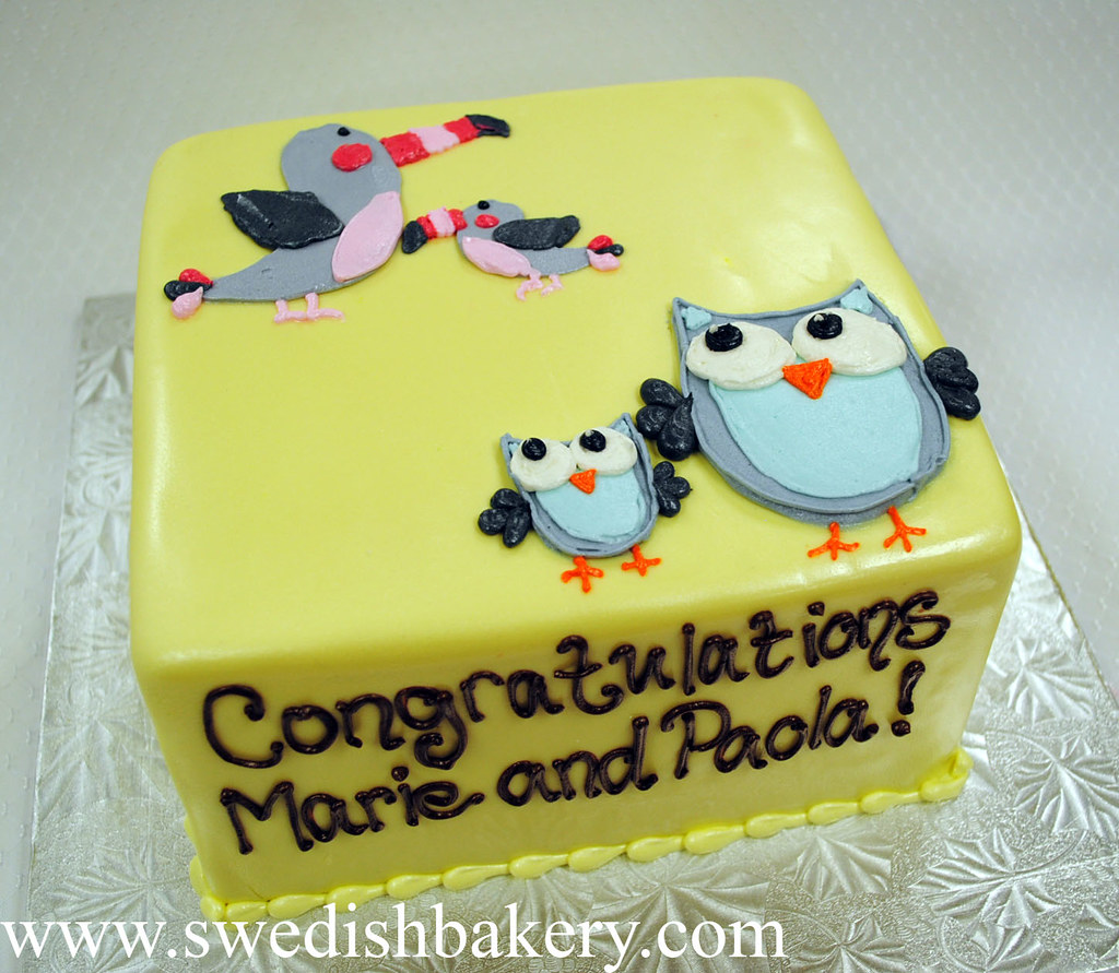 Owls And Toucans Baby Shower Cake Please Call 7735618919 Flickr
