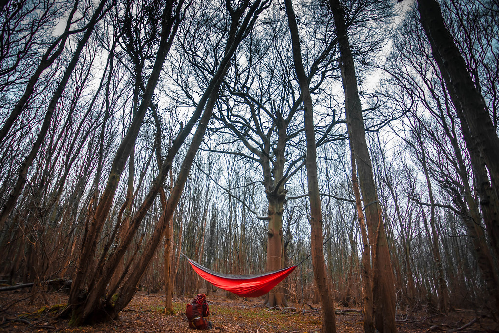 Hammock in the Woods | My February night out for the Year ...