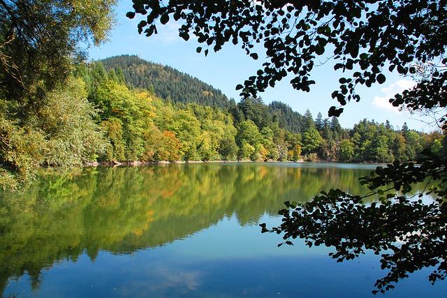 Oktober 2016 - Bergsee Bad Säckingen - Scheffelfelsen, Tretboote, Café, Bäume und Wälder ... Fotos und Collagen: Brigitte Stolle 2016