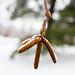 Ottawa Ice 2014-01-04