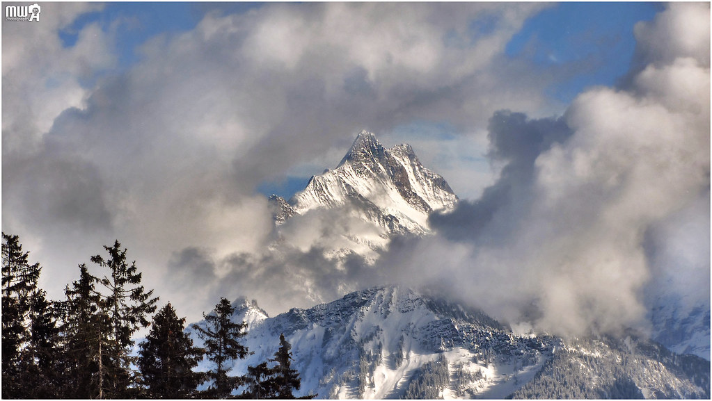 The Schreckhorn covered in clouds