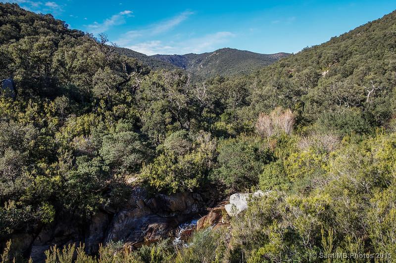 Paisaje de la Sierra de la Albera
