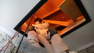 A person blowing insulation into an attic | by USDAgov