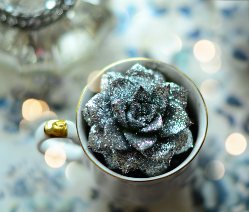 Glitzy Succulent | by Cloclo Creative