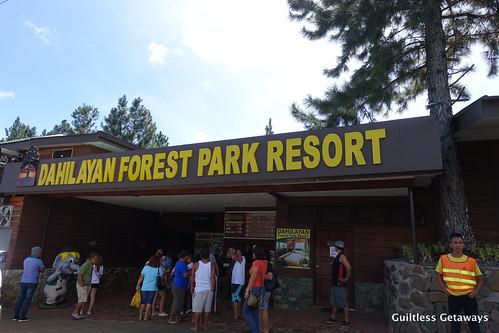 dahilayan-forest-park-resort.jpg