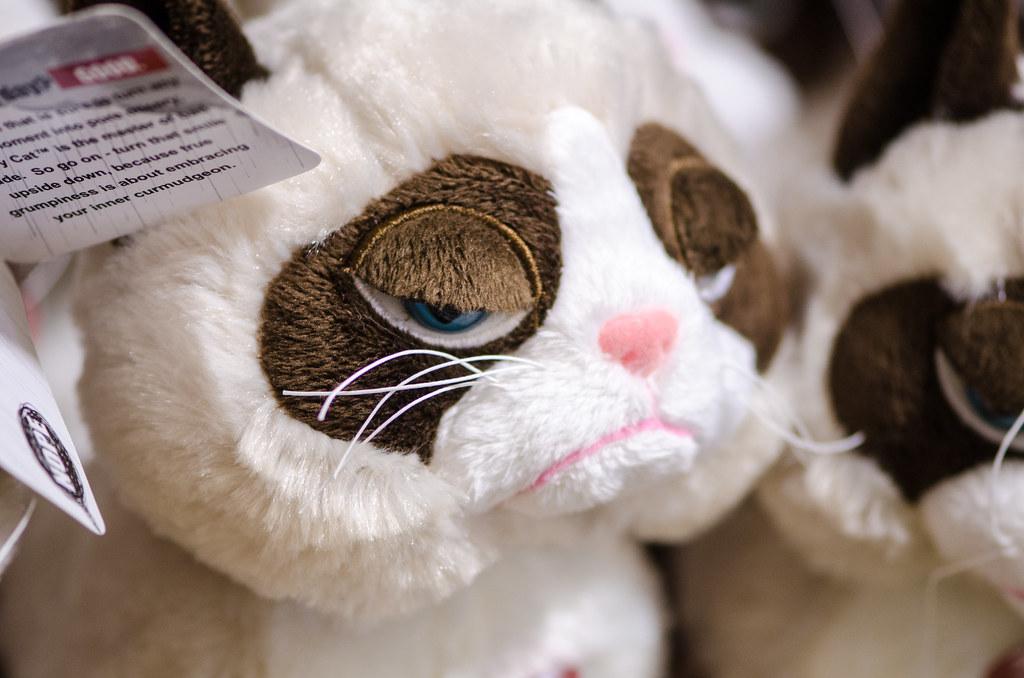 Grumpy Cat Stuffed Animal Barnes And Noble