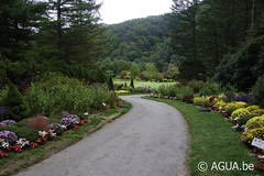 The Road to Heaven @ The Garden of Morning Calm