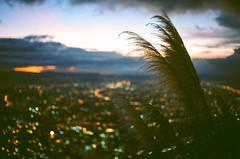 sunset from monserrate