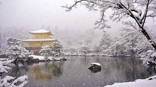 As the snow falls... / Kinkaku( The Golden Pavilion) - Rokuonji-Temple | by maco-nonch★R