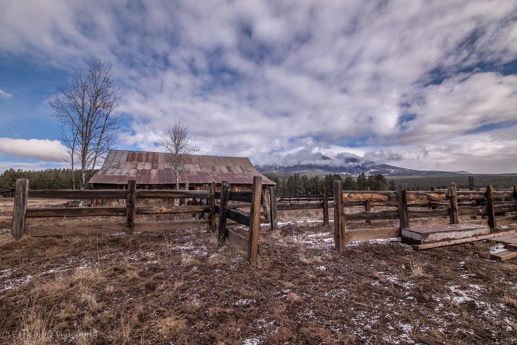 Cabin Fever Dsc 1682 Check Out This Hut Flagstaff Az Hum