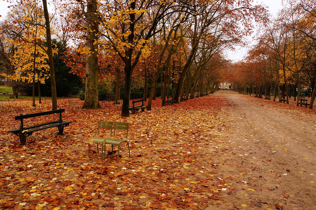 paris jardin du luxembourg en automne paris yann og flickr. Black Bedroom Furniture Sets. Home Design Ideas