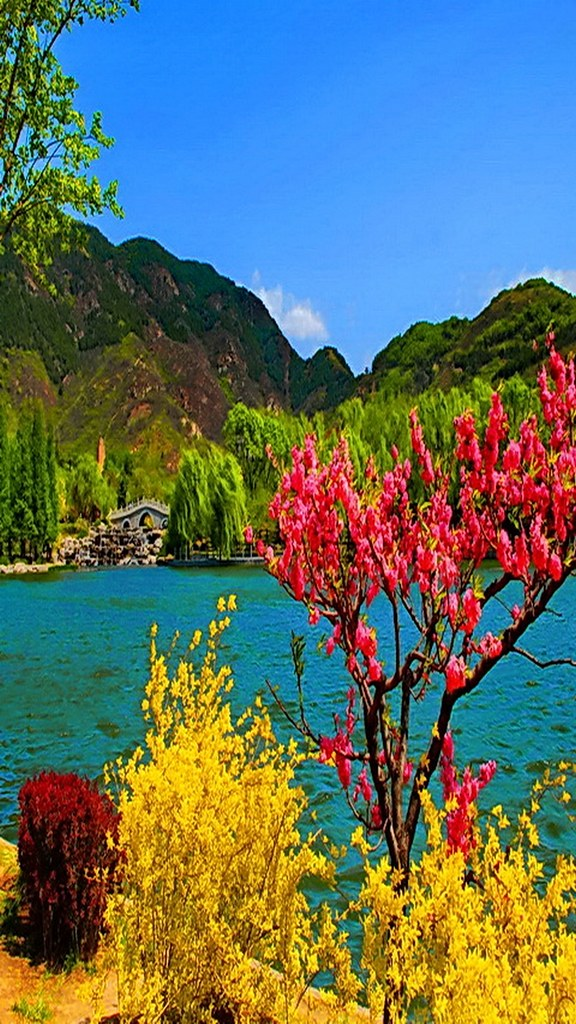 Mobile Phone Wallpaper Hd Nature Colors