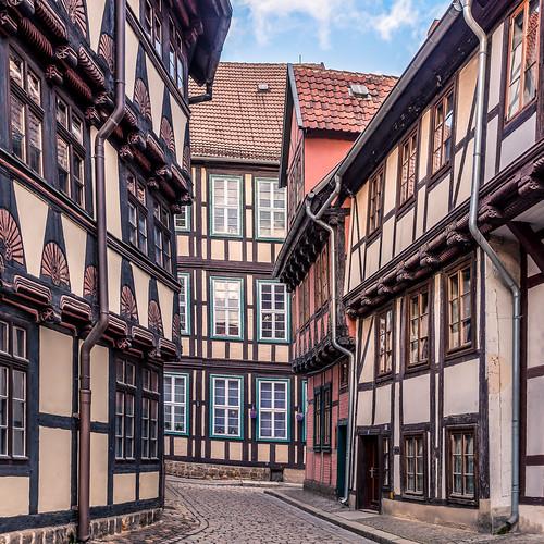 Single frauen quedlinburg