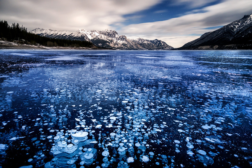Frozen In Time Abraham Lake Canadian Rockies The