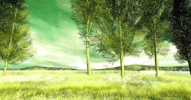 green photos on flickr flickr