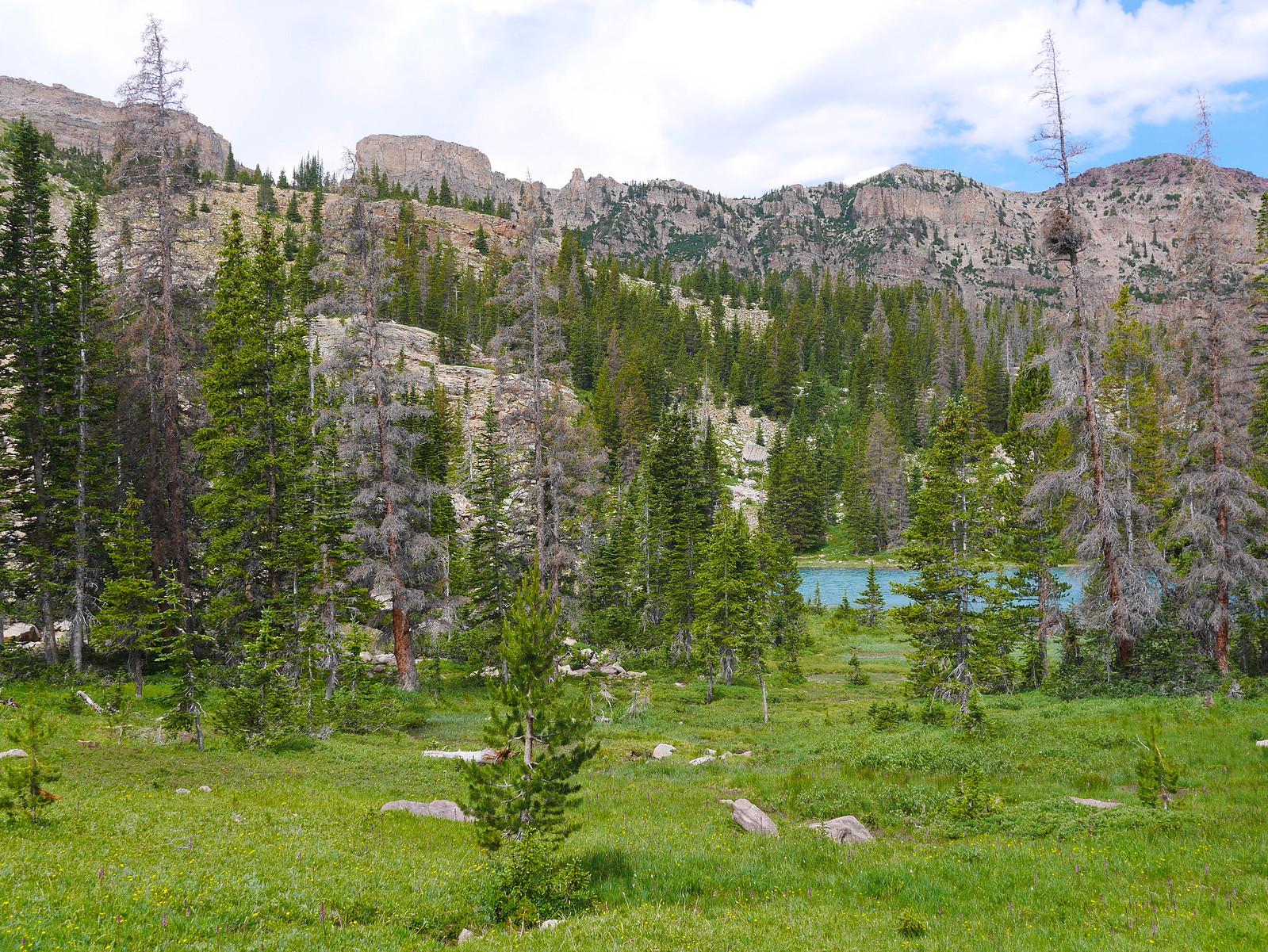 Amethyst Basin