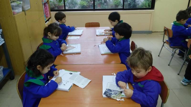 Capullito - Experiencias Educativas